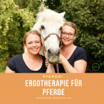 ergotherapie paard zinvol beweging geven revalidatie