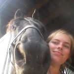 fries paard trainen halster