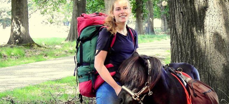 wandelen paard dagtocht