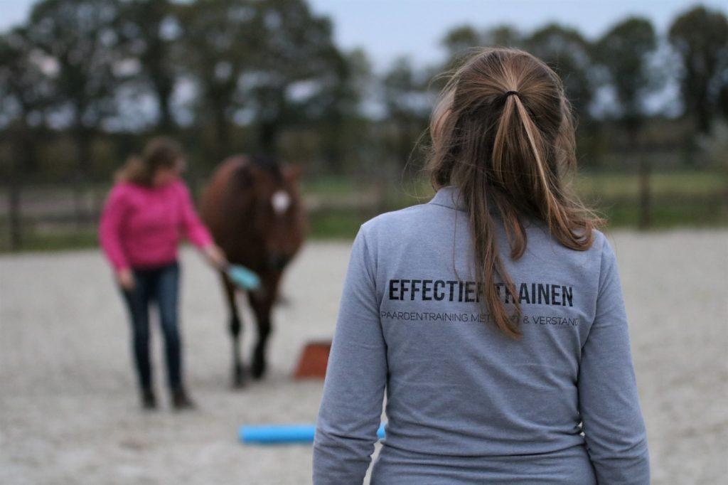 wat houdt clickertraining voor paarden in