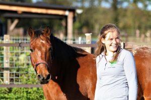 Paard in training - op laten leiden met positieve bekrachtiging