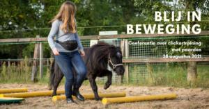 evenement clickertraining paarden trainen